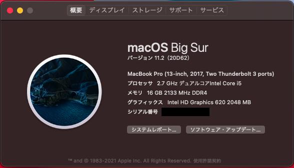 Hackintosh macOSX BigSur 11.2(20D62)の更新成功!
