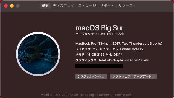 Hackintosh macOSX BigSur 11.3(20E5172i)Betaのインストール成功!